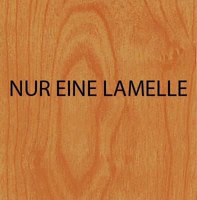 Falttür Norderney 809 Zubehör Lamelle