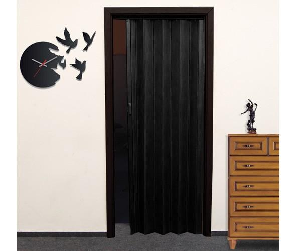 Falttür Rügen 6C schwarz