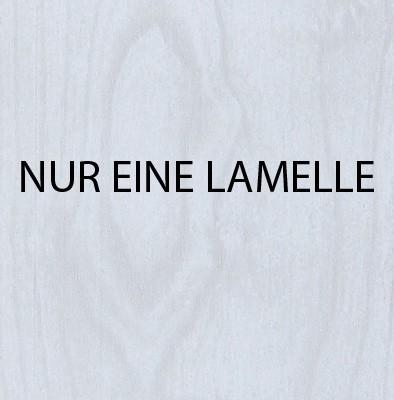 Falttür Norderney 813 Zubehör Lamelle